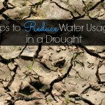 Tips to reduce your water usage while in a drought.