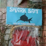 Shark Bait Party Bag Craft w/Printable