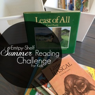 Empty Shelf Summer Reading Challenge for Kids