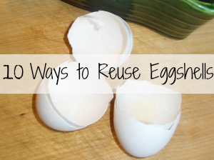 10 Ways to Reuse Eggshells Popular Post