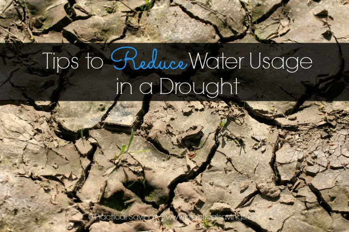Tips to Reduce Water Usage in a Drought